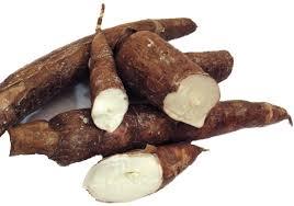 Casava Root