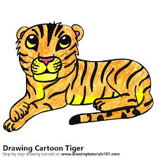 color tiger drawing. Exellent Tiger Cartoon Tiger Color Pencil Drawing With I