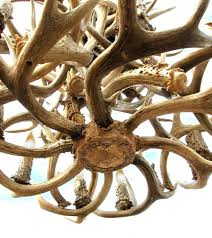 how to build an antler chandelier how to build an antler chandelier designs build antler chandelier