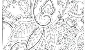 Peony Flower Coloring Page Pages For Adults Easy Printable Disney