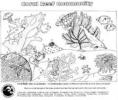 Small Picture Sea Star Coloring Page Top Set Of Activity Pages About Ocean