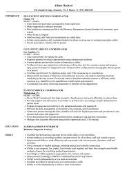 Service Coordinator Resumes 10 Customer Service Resume Summary Examples Cover Letter
