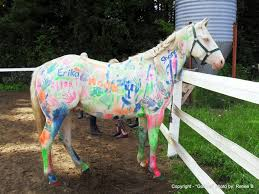 white baby horses playing.  Playing Following The Artistic Endeavor Horse Was Thoroughly Cleansed Bathed  And Scrubbed Afterward On White Baby Horses Playing T