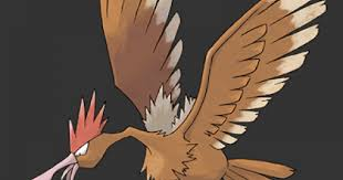 Pokemon Spearow Evolution Chart Pokemon Lets Go Fearow Stats Moves Evolution Locations