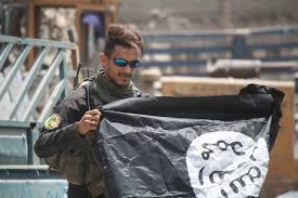 When Cities <b>Fall</b>: Mosul and Tal Afar, Iraq and Raqqa, Syria