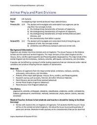 Phylum Lesson Plans Worksheets Lesson Planet
