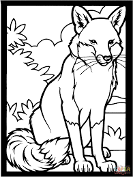 Small Picture Printable Woodland Animal Coloring Pages Coloring Coloring Pages