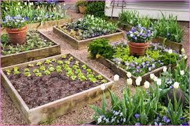 Small Picture Raised Garden Design Ideas Markcastroco