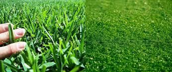 Artificial grass vs turf Soccer Turf My Backyard Sports Turf Vs Grass Pros And Cons Backyard Sports