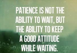 Patience Is A Virtue Quote Custom 48 Beautiful And Wise Quotes About Patience With Images