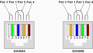 cat5e wiring diagram wall plate on rj45 jack picturesque carlplant cat 6 wiring diagram at Cat5e Wiring Diagram