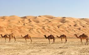 world s most beautiful deserts