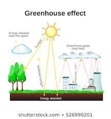 Greenhouse Effect Images Stock Photos Vectors Shutterstock