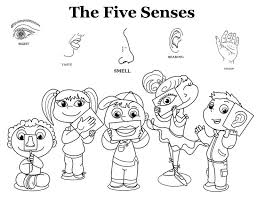 Five Senses Clipart Coloring Page 115 Clip Arts For Free Download