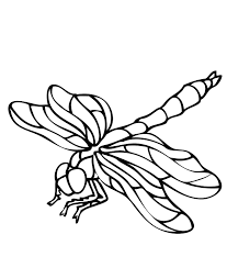 Small Picture Printable Dragonfly Coloring Pages Of Animals Animal Coloring