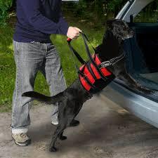 Unfälle, krankheiten oder auch das alter können es notwendig machen, dass du deinen hund mit einer gehhilfe unterstützt. Hundegeschirr Tragegeschirr Hundelaufhilfe Hebehilfe Tragegurt Tragehilfe 2grosse Ebay