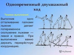 Презентация на тему ЛЫЖНЫЕ ХОДЫ КЛАССИФИКАЦИЯ ЛЫЖНЫХ ХОДОВ  6 Техника