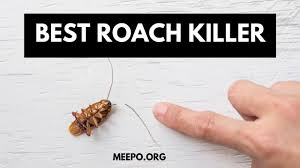How To Get Rid Of Cockroaches In The Kitchen Cabinet