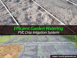 drip system for garden. Effecient Garden Watering - PVC Drip Irrigation System For