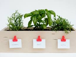 how to make a kitchen planter box for herbs