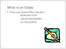 how to write an essay презентация онлайн what is an essay