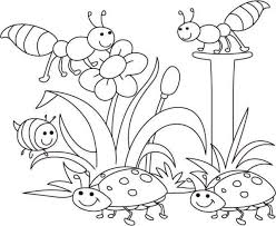 Small Picture Fancy Ideas Bug Coloring Page Simple Bug Coloring Sheet Spring