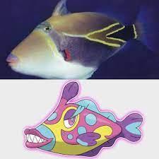 Bruxish is based off of the Humuhumu Nukunuku Apua'a, Hawaii's state fish.:  pokemon