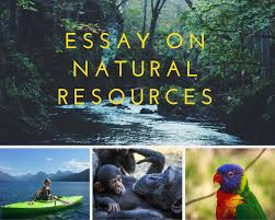 essay sample on natural resources what do we use natural resources for