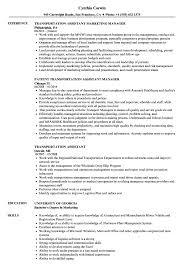 Transportation Resume Examples Transportation Assistant Resume Samples Velvet Jobs 18