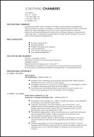 Sales Summary Resume Free Entry Level Sales Resume Templates Resume Now