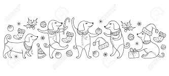 Grens Met Overzichts Gelukkige Hond In Zwarte Geïsoleerd Op Witte