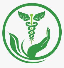 Naturopathy Services Health Medicine Herbalism Pharmacy - Herbal Medicine  Logo Png, Transparent Png - kindpng