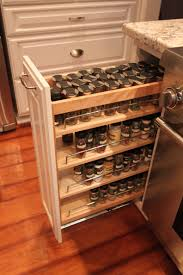 Full Size of Shelf: Spicehelf Rack Insert For Cabinets Best Home Furniture  Design Within Dimensions ...