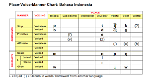 The ipa column contains the symbol in the international phonetic alphabet, as used in phonemic transcriptions in the ascii column shows the corresponding symbol in the antimoon ascii phonetic alphabet, which can be used to type the pronunciation of words on. Speech Language Therapy