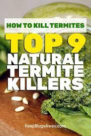 natural termite killer.  Natural How To Kill Termites Naturally Inside Natural Termite Killer O