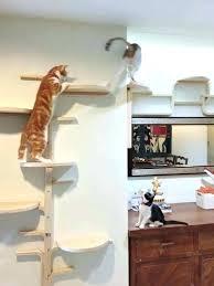 cat diy climber stand wall shelves shelf mounted