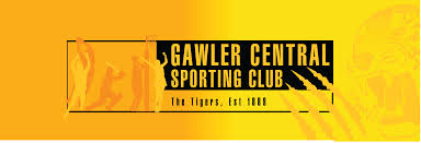 Barossa Light And Gawler Netball Community Symes Accountants Gawler South Australia