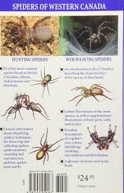 Spider Anatomy Chart Spiders Of Western Canada Amazon Co Uk John Hancock