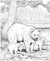 Small Picture For Kids Free Bears Coloring Pages Printable Bear Coloring Pages