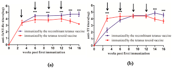 tetanus toxin toxins free full text comparative immunogenicity of the tetanus