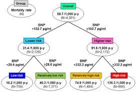 Bnp Levels Chart Comparable Prognostic Impact Of Bnp Levels Among Hfpef