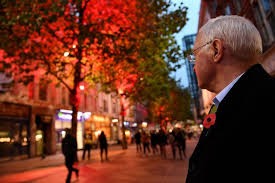 the new street trees are turning red during the british legion poppy appeal