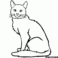 Small Picture Himalayan Cat Colouring Pages Page 2 Litle Pups