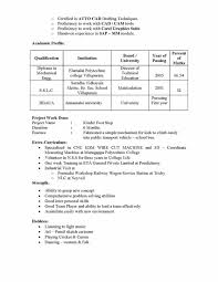 Sap Fico Resume Sample Pdf Resume For Study