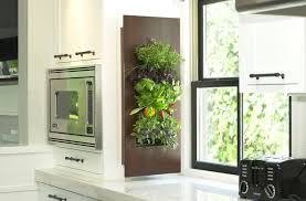 marvelous kitchen wall herb garden and edible walls