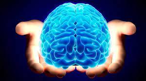 Ona Daha Uzun Yıllar İhtiyacınız Olacak! Beyninizi Yaşlanmaktan Korumanın  Yolları - onedio.com