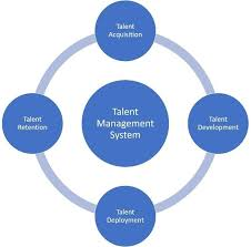 Talent Management System The Components Of A Talent Management System Researcher Derived