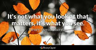 Thoreau Quotes Impressive It's Not What You Look At That Matters It's What You See Henry
