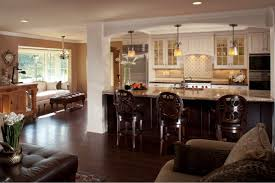 Kitchen And Living Room Designs Decorating Ideas Open Kitchen Living Room Nomadiceuphoriacom