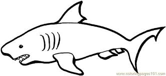 Small Picture Australian sharks Coloring Page Free Australia Coloring Pages
